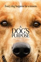 [A Dog's Purpose]