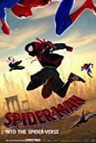 [Spider-Man: Into The Spider-Verse]